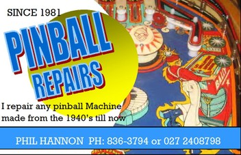 Pinball Machine Repair