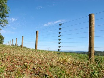 Farm Fencing Systems Service