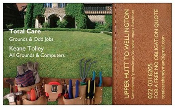 Groundsman /Computer repairs/ handyman/House wash