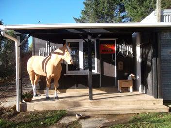 Horse Cover Repairs & Saddlery