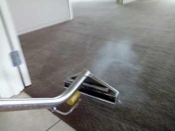 Carpet Cleaning Christchurch | Golden Eagle
