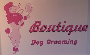 Dog Grooming - Auckland City