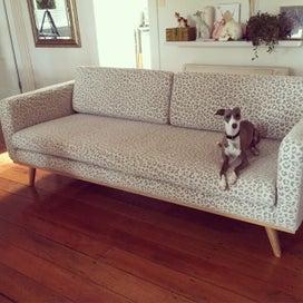 Upholstery.Upholster