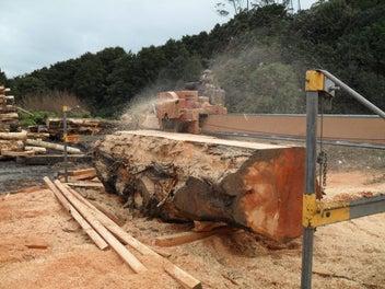 Portable Sawmilling slabs and Macro timber sales