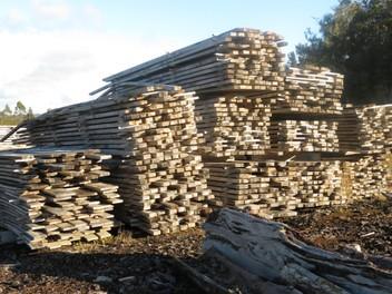 TOTARA and ROUGH SAWN PINE-untreated 4 SALE NOW