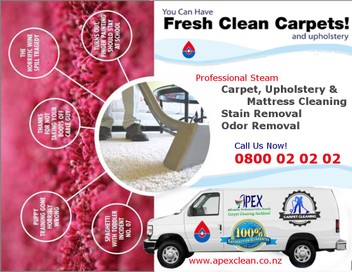 Professional Carpet Cleaning Auckland North Shore