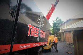 Tree Tops - Professional Tree Care