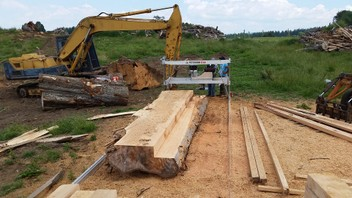Portable Sawmilling, Felling, Timber suppiles