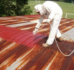 NEED Roof paint ? for summer