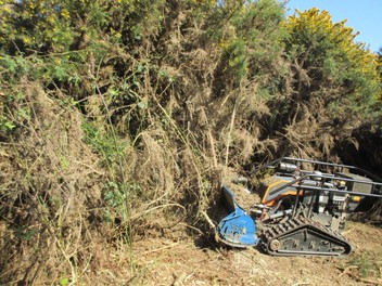 Slopemowing- Brush Cutting- Gorse Removal