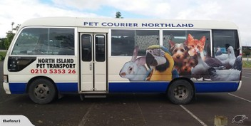 PET TRANSPORT NORTHLAND TO WELLINGTON