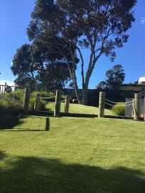 Residential and Sporting Artificial Grass