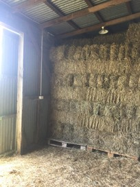 Hay For Slae
