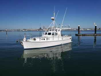 Fishing Charters Auckland North Shore