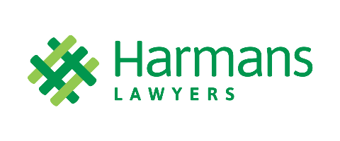 Litigation Lawyer