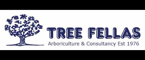 Tree Fellas need Climbing Arborists