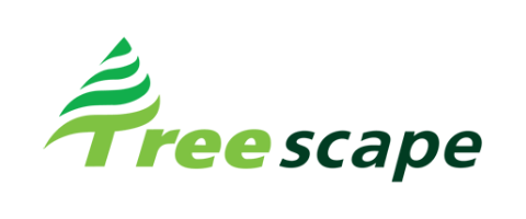 Experienced Arborists and Utility Arborists