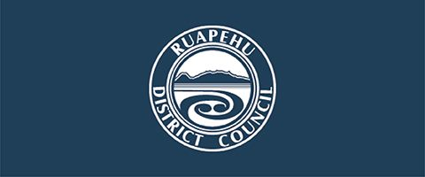Strategic Analyst - Local Government Council