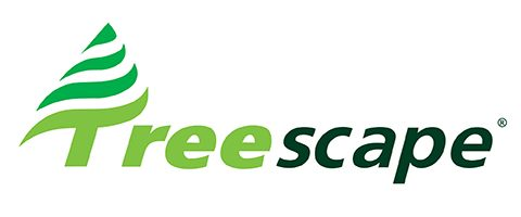 Treescape New Zealand