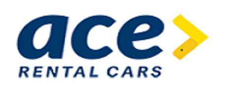 Vehicle Detailer/Groomer