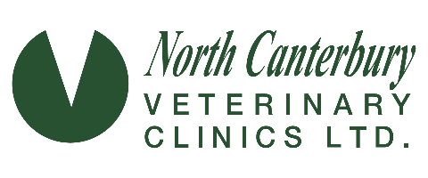 Qualified Full Time Vet Nurse