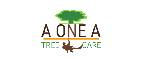 Arborist (Contract) and Grounde (Full time)