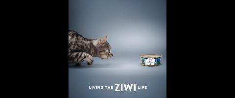 Ziwi Limited
