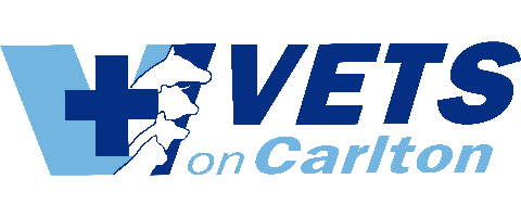 VETERINARIAN – Full Time Position