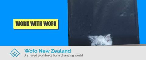 Contract cleaners wanted - Dunedin $25p/h