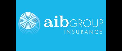 Domestic Insurance Advisor & Admin Officer