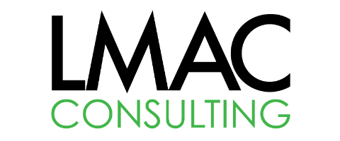 LEAN / TECHNOLOGY CONSULTANT