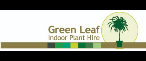 Indoor Plant Hire Service Technician
